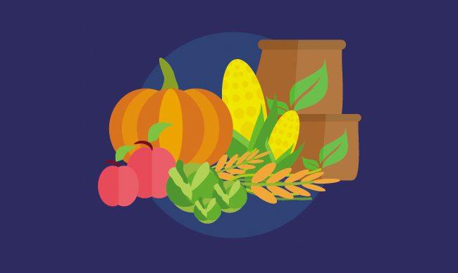 Проверенные сорта томатов и других культур